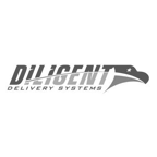 Diligent Delivery Systems